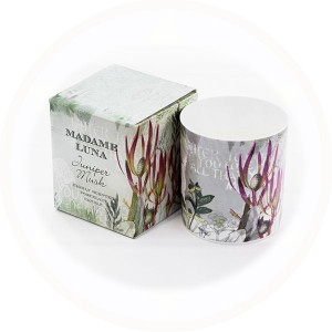 Botanical Design 1 Juniper Musk fragrance boxed porcelain candle - AllisOne
